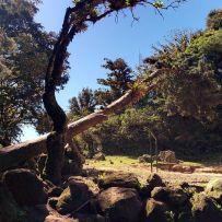 Volcán de Ipala - Alrededores