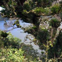 Volcán de Ipala - camino a la laguna